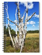 Dead Trees Spiral Notebook