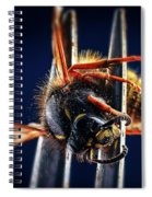 Dead Wasp On A Fork Spiral Notebook