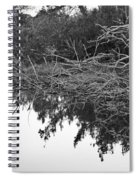Deadfall Reflection In Black And White Spiral Notebook