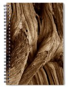 Deadwood Spiral Notebook