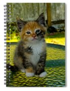 Dear Abby Spiral Notebook
