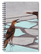Death Valley Birds Spiral Notebook