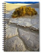 Death Valley Mudflat Spiral Notebook