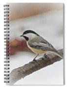 December Chickadee Spiral Notebook