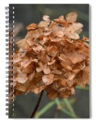 December Hydrangea II Spiral Notebook
