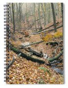 Deciduous Forest With Ravines Spiral Notebook