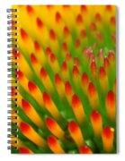 Deciphering Close Spiral Notebook