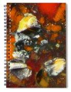 Deconstruction Spiral Notebook