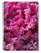 Decorative Fancy Pink Kale Spiral Notebook