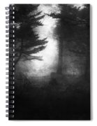 Deep In The Dark Woods Spiral Notebook