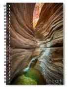 Deep Inside Spiral Notebook