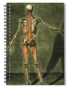 Deep Muscular System Of The Back Spiral Notebook