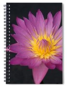 Deep Pink And Yellow... Spiral Notebook