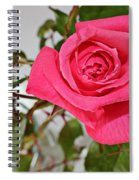 Deep Pink Rose - Summer - Rosebuds Spiral Notebook