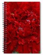 Deep Red Carnation 2 Spiral Notebook