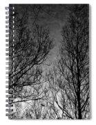 Deep Sky Spiral Notebook