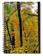 Deep Woods Spiral Notebook