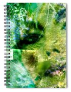 Deep Woods Wanderings Spiral Notebook