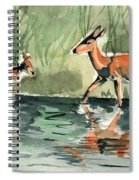 Deer At The River Spiral Notebook
