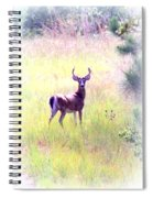 Deer - Buck - White-tailed Spiral Notebook