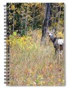 Deer Camoflauged Spiral Notebook