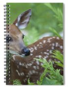 Flora And Fawna Spiral Notebook