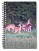 Deer-img-0158-001 Spiral Notebook