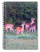 Deer-img-0160-005 Spiral Notebook