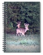 Deer-img-0177-001 Spiral Notebook