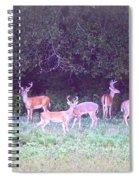 Deer-img-0470-002 Spiral Notebook