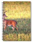 Deer-img-0627-002 Spiral Notebook