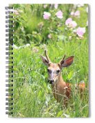 Deer In Magee Marsh Spiral Notebook
