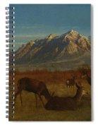 Deer In Mountain Home Spiral Notebook
