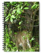 Deer In The Bushes Spiral Notebook