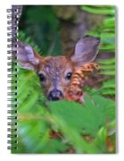 Fawn In The Ferns Spiral Notebook