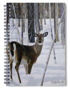 Deer In The Snow Spiral Notebook