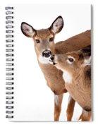 Deer Kisses Spiral Notebook