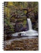 Deer Leap Falls Spiral Notebook