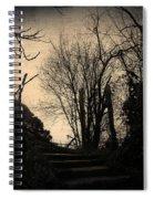 Deja Vu II Spiral Notebook