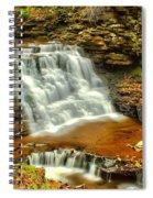 Delaware Falls - Ricketts Glen Spiral Notebook