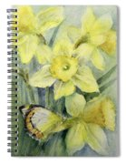 Delias Mysis Union Jack Butterfly On Daffodils Spiral Notebook