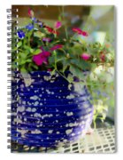 Delicata Spiral Notebook