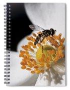 Delicate Spiral Notebook