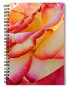 Delicate Edges Spiral Notebook