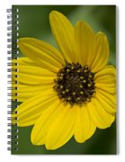 Delicate Flower Spiral Notebook