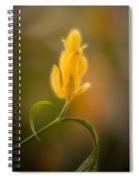 Delicate Fountain Of Gold Spiral Notebook