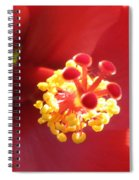 Delicate Hibiscus Spiral Notebook