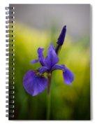 Delicate Japanese Iris Spiral Notebook