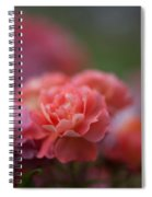 Delicate Layers Of Light Spiral Notebook