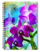 Delicate Orchids Spiral Notebook